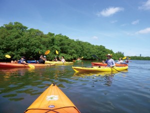 Almost-Heavan-Kayak-Tours Sarasota Florida